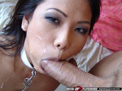 Kleine Titty an der Leine Asiatische veronica Lynn bekommt Ihr Gesicht Cum Verputzt Nach Reiten ein Schwanz