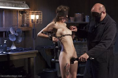 Solely legal cutie Willow Hayes undergoing number one time BDSM porn release
