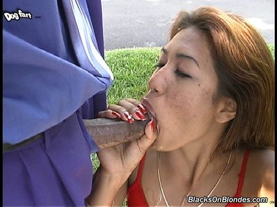 Sexually excited Chinese Lyla Lei is worshipping ebony knobs and scrotums and getting hardly diddled